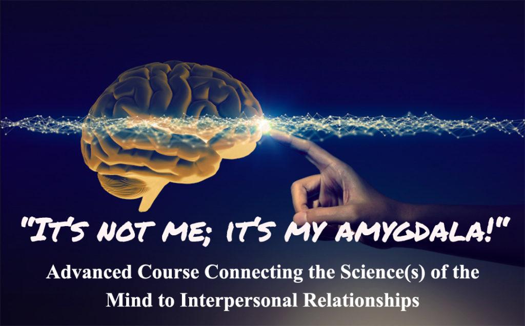 brain neuroscience, amygdala, course